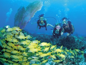 Family scuba diving in the Bahamas