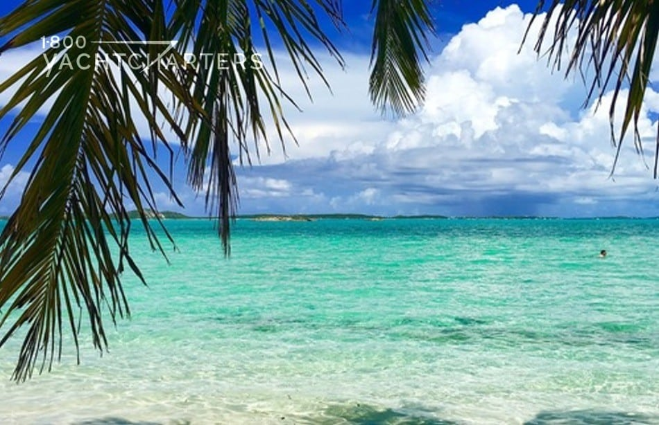 Photograph of the turquoise water in the Bahamas. Photo is taken from the beach. There is a palm tree on the left side of the photo.