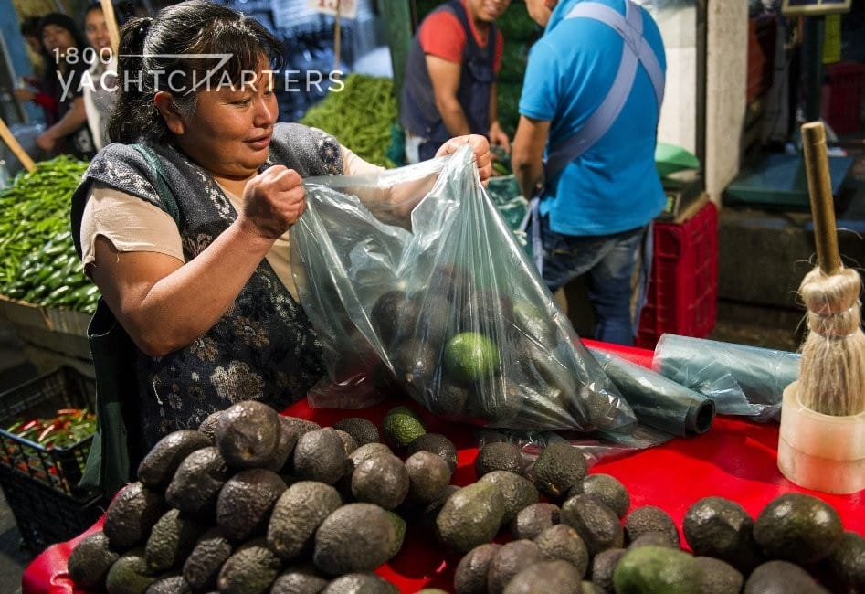 Go green on charter. Photograph of woman selling avocados at a Farmer's Market. Photo shows her holding a large plastic bag full of avocados