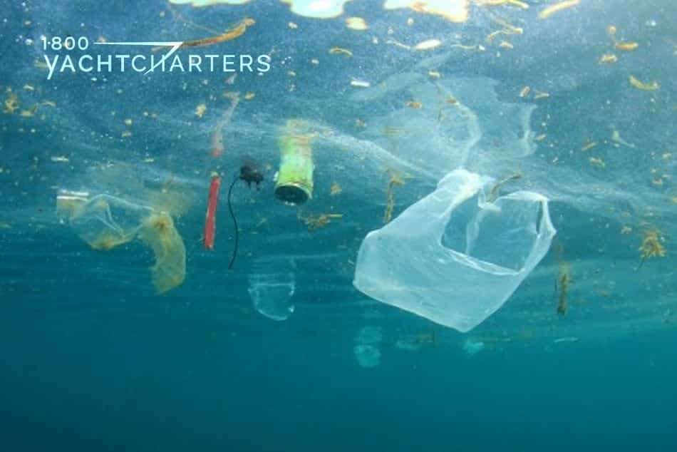 photograph of plastic bags and garbage floating in the ocean. The photograph was taken from deeper in the water, and it was taken facing up toward the surface of the ocean.