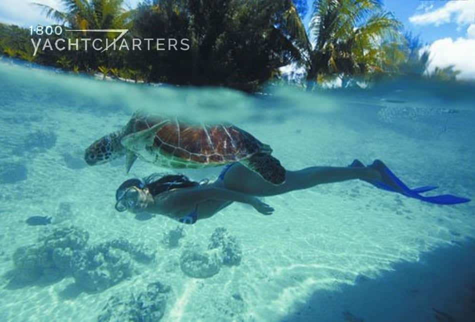 Underwater photograph of girl snorkeling and looking up at sea turtle swimming above her. Photo includes image of island in the background. Water is transparent green with white sand below them in the ocean