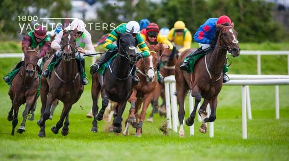 Photograph of a horse race. Multiple horses coming around the corner on a grass race track. Riders all in different colors.