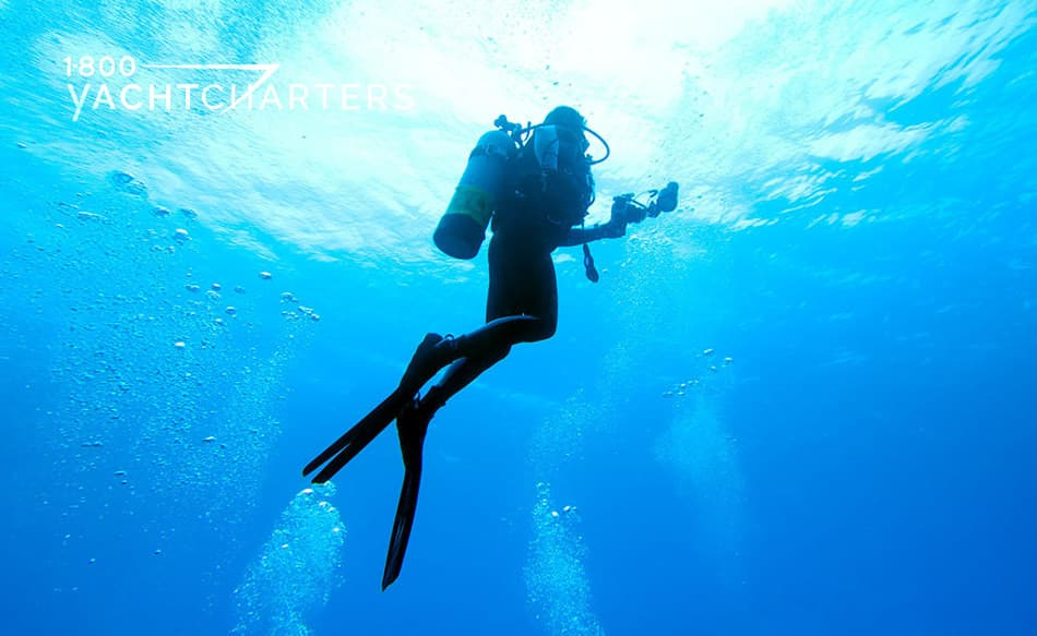 Photograph of a scuba diver in silhouette. The diver is rising to the surface of the ocean. The sunlight is on the top of the water.