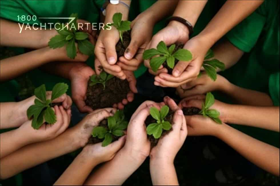 Sustainability reminder. Photograph of 7 pairs of hands in a circle. Each person holds dirt with a plant growing up from the dirt.