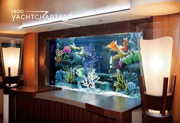 Photograph of aquarium on a yacht. The room has chestnut-colored walls, and the tank is built in to the wall. It is full of colorful fish and corals.