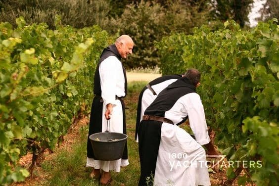 Wine tasting with the Monks of Saint Honorat and the Abbey of Lerins in Cannes France