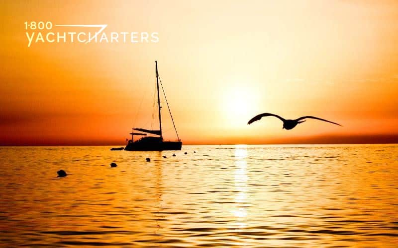 silhouette of catamaran sailboat at anchor with a beautiful orange sunset behind it. The silhouette of a bird flies in from the right side of the photo